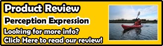 Perception Expression 11 Review